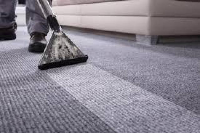 carpet cleaner north shore